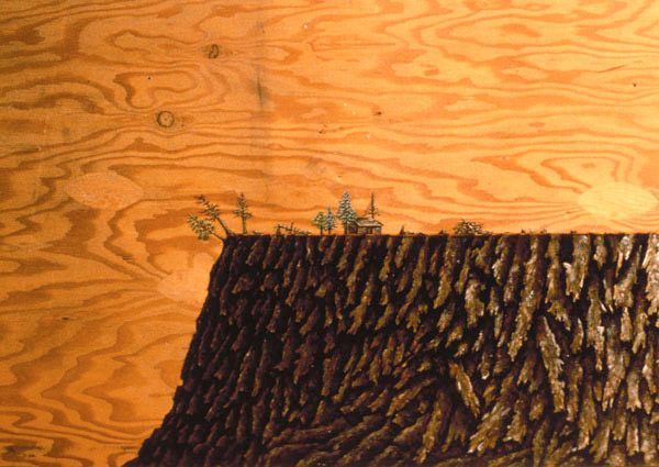 Homesteading (detail), David Lefkowitz, 1999
