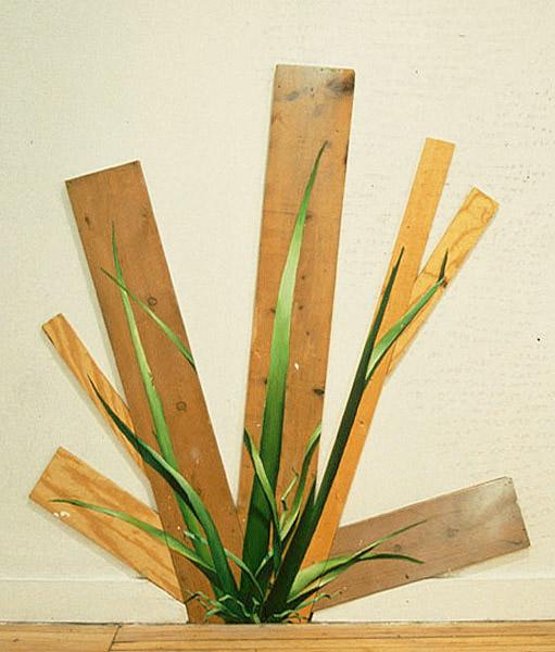 Tall Grass Hybrid, David Lefkowitz, 1997