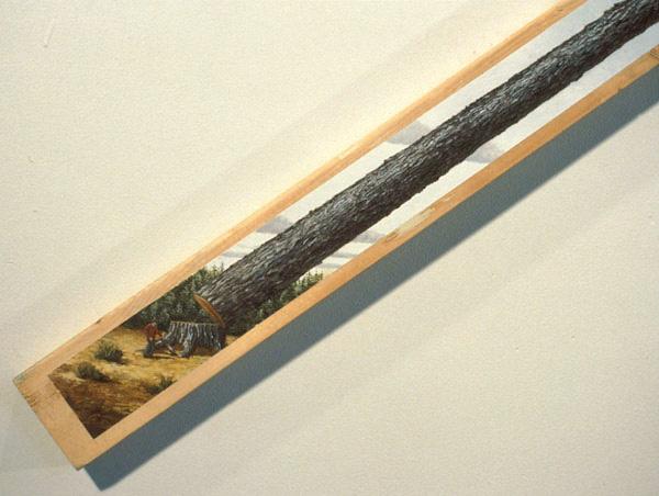 Timber (detail), David Lefkowitz, 1993