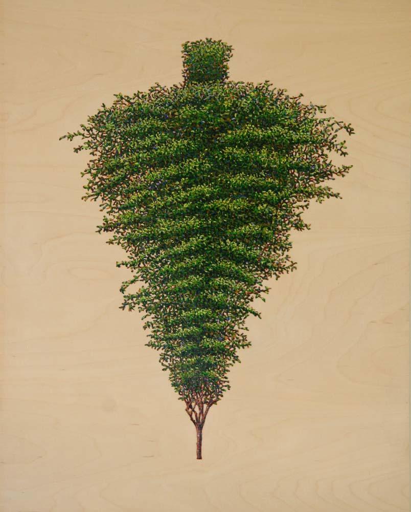 Inverted Pine, David Lefkowitz, 2008