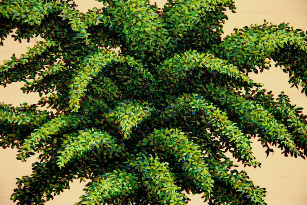 Palm (detail), David Lefkowitz, 2008