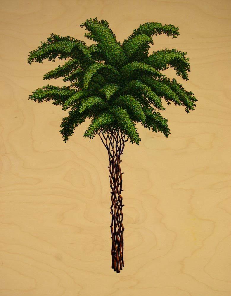 Palm, David Lefkowitz, 2008