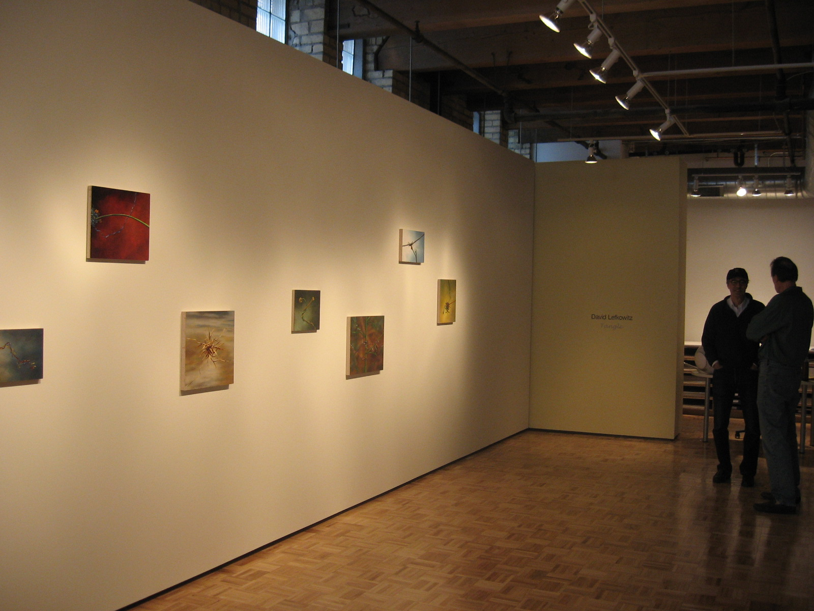 Tangle Exhibition, Thomas Barry Fine Arts, 2007