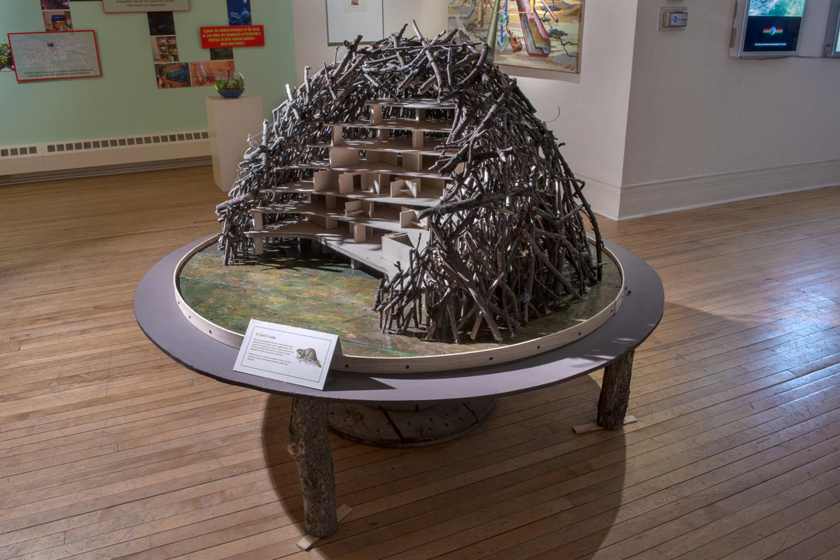 Busywork: Beaver Lodge Model, David Lefkowitz, 2013